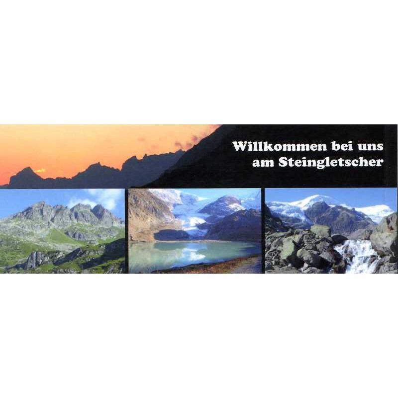 Steingletscher am Sustenpass by Filidor