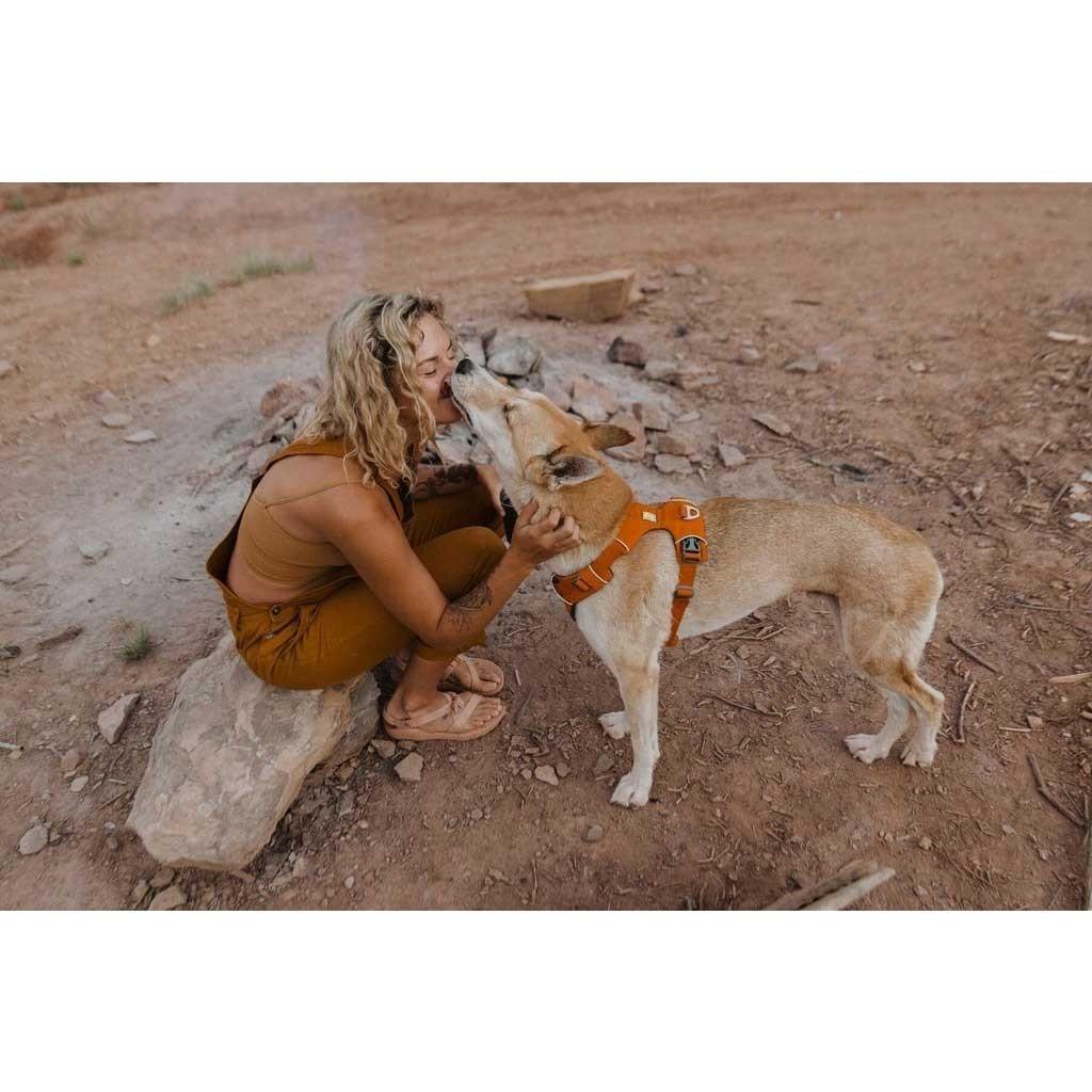 Ruffwear Front Range Dog Harness - Campfire Orange