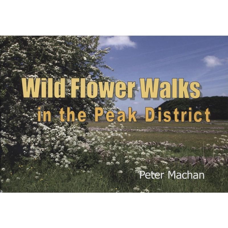 Wild Flower Walks in the Peak District