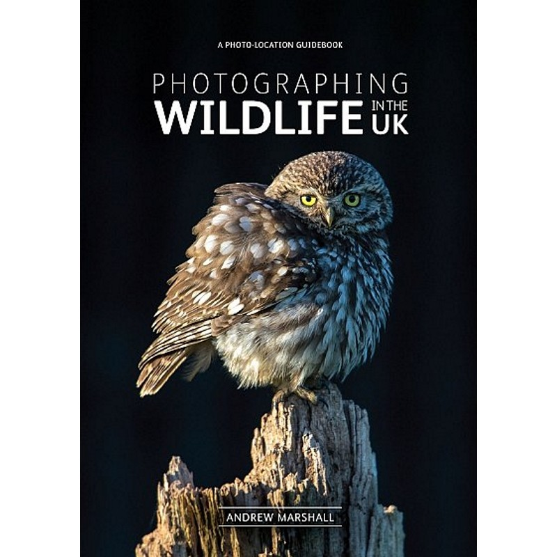 Photographing Wildlife in the UK by Books And Maps