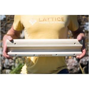 Lattice Testing and Training Rung Fingerboard