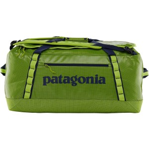 Patagonia Black Hole Duffel - Peppergrass Green